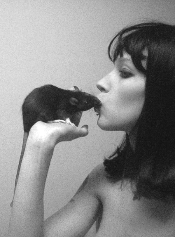 Rat Love by carandrats