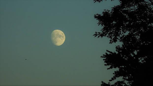 Moon...9/17/2021