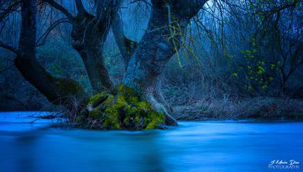El agua callada (II)