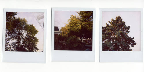 from my house. a polaroid. by shiverandshock