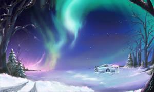 Northern Lights with Talon