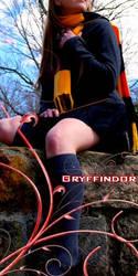 Avatar - Gryffindor by dirtypicture