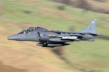 ZH657 Harrier by PJones747-Aircraft