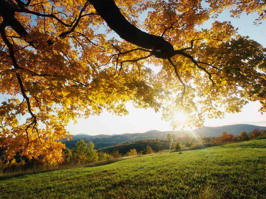 autumn sunrise by feesha88