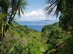 Fiji by evils-stock