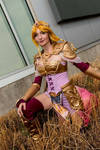 Queen Zelda, Hyrule Warriors