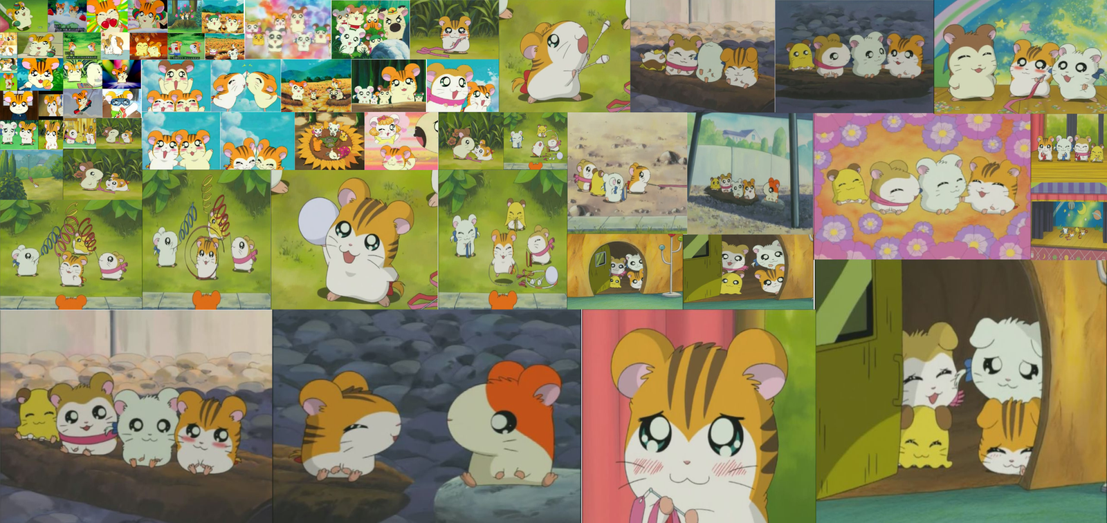 Hamtaro - Stan's and Sandy's Gallery by Christ11 on DeviantArt