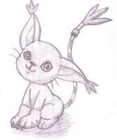 Gatomon -Tailmon- sketch by KarrieDreammind