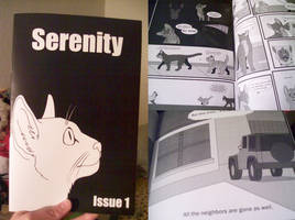 Serenity Comic is Here