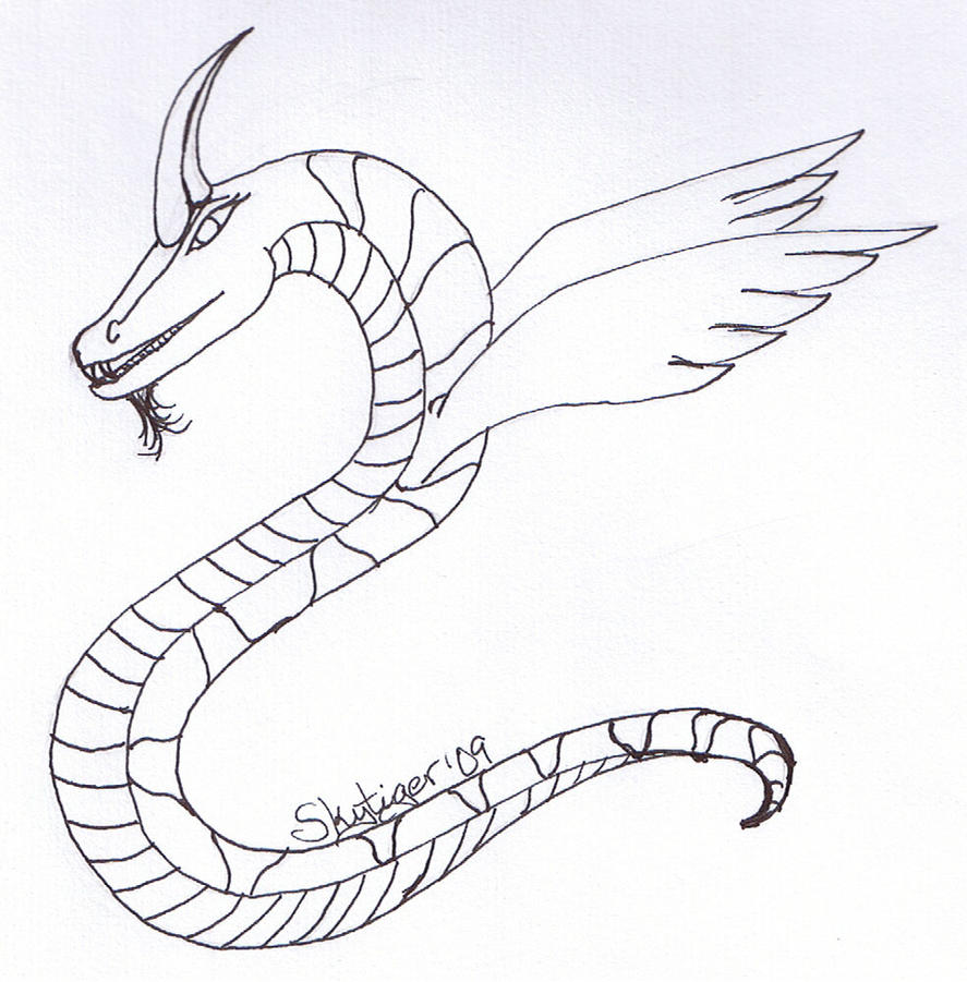 Line Art Dragon : Coral dragon line art by skytiger on deviantart