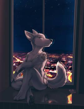 Ideka on the Windowsill