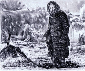 Sandor Clegane AKA The Hound
