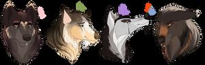 Wolf adopt. CLOSED: