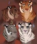 Tigers adopt. CLOSED