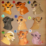 Lion cub adopt with whitelupa. CLOSED: