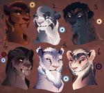 Teen lion adopts. AUCTION. CLOSED