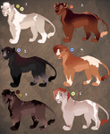Lioness adopts. OPEN: 1 left! price lowered!