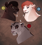 Lioness adopts. CLOSED