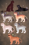 Lionesses that did not sell! OPEN: 1 left! CHEAP!