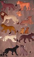 Lion adopt. OPEN: 1 left!
