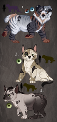 Granthrow cub adopt. Auction. CLOSED: by BeeStarART