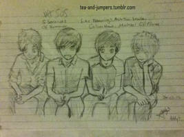 5SOS by tea-and-jumpers