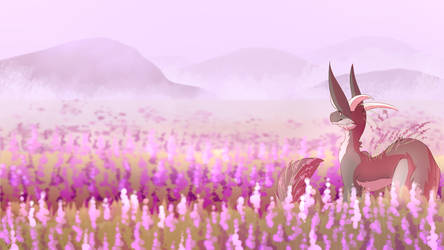 Lavender Fields [G] by Eclirra