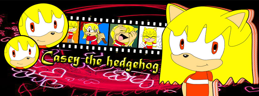 .::Casey the hedgehog Front::. by MultiDanita123