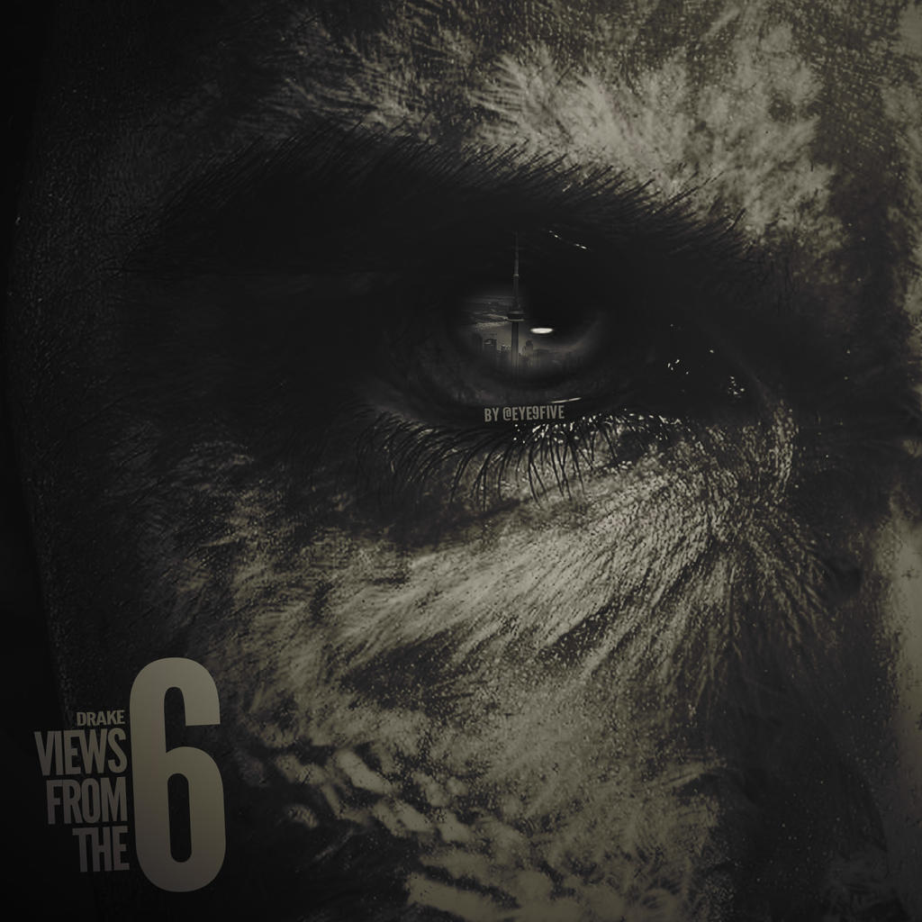Eye9FiveDesigns Drake Views From The 6 Album By