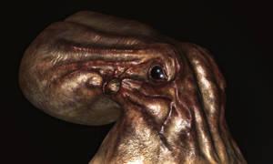 Octopus test render 001