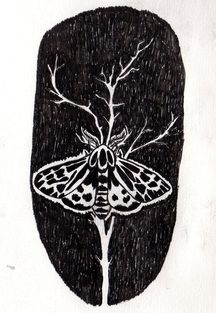 The Moth by Orfieu