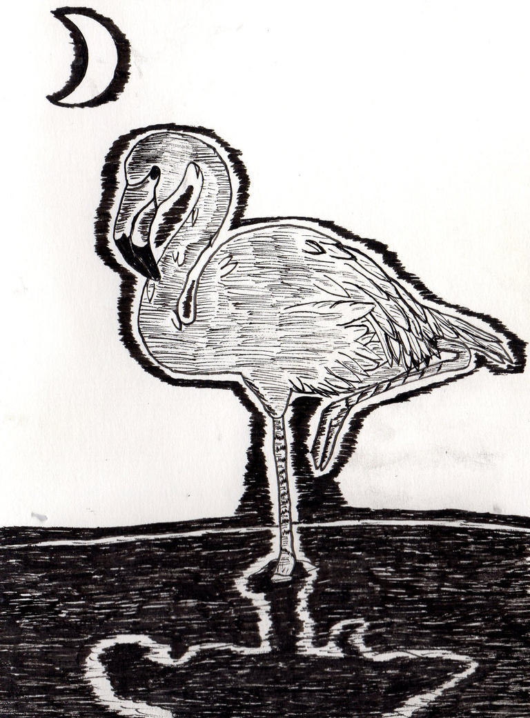 The Flamingo by Orfieu