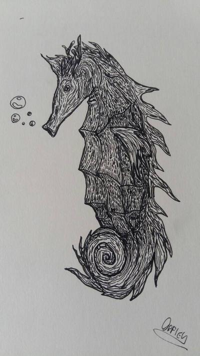 a sea horse by Orfieu