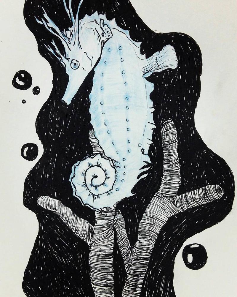 Sea horse. by Orfieu