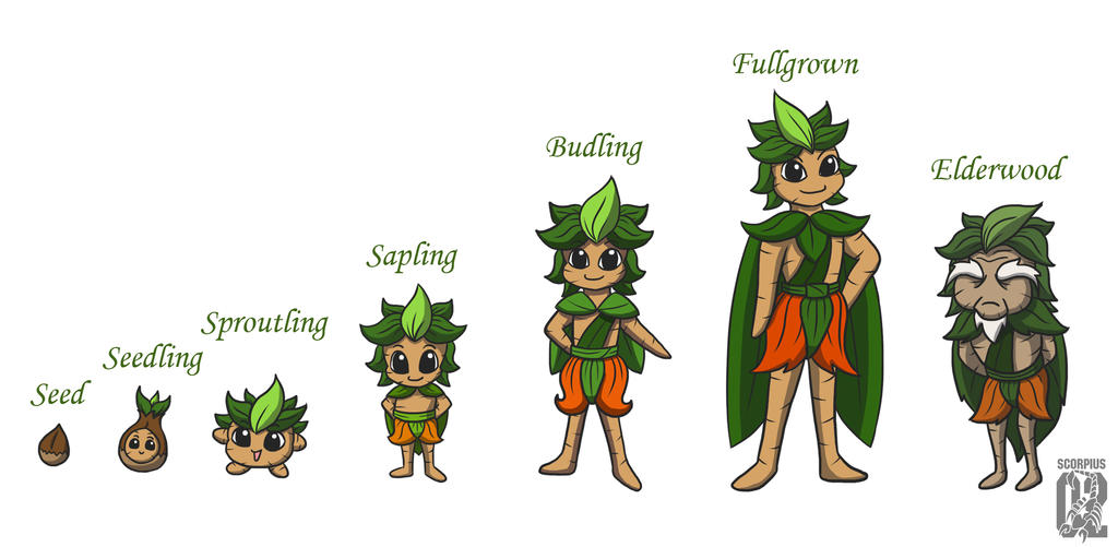 Mandrake Life Stages
