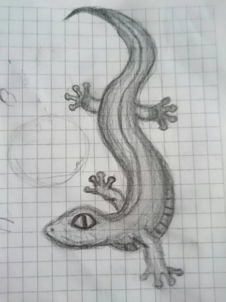 lil' lizard by najodleglejszy