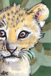 Lion Cub Postage Stamp by De-Vagrant