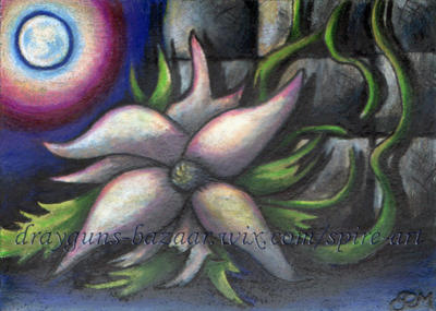 Night Blooms ACEO by De-Vagrant
