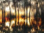 A bayou sunset
