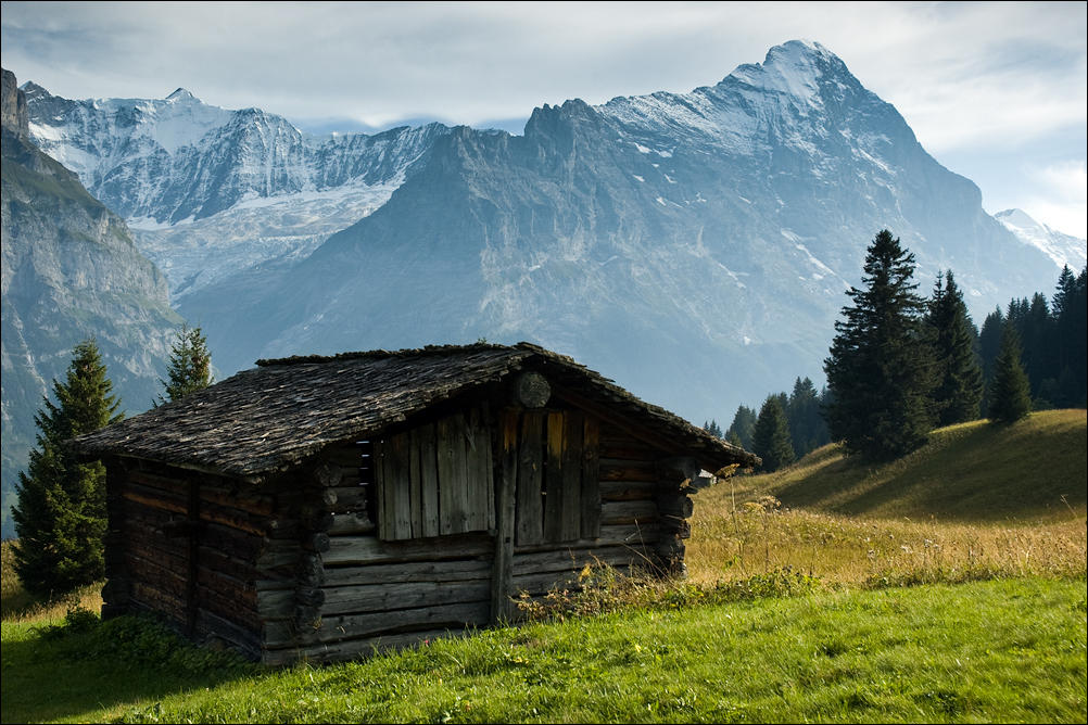 Lonely Cottage 2