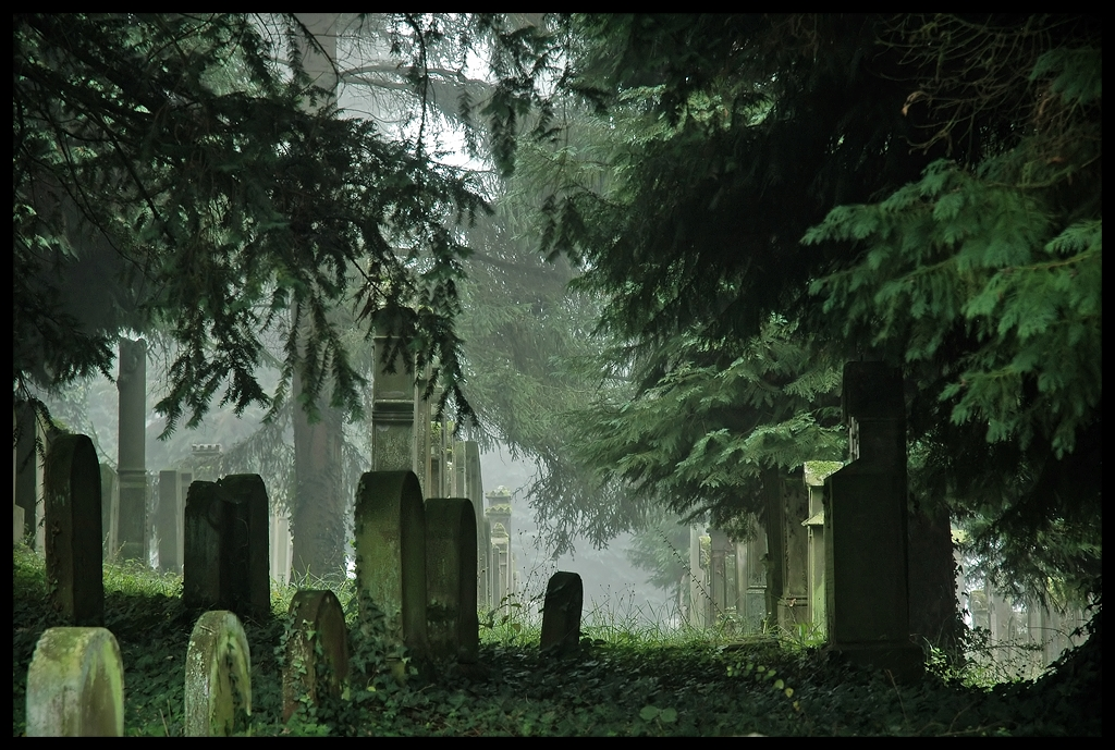 Jewish Graveyard II by FrederikM