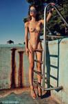 Pic Nr.1646 by zlty-dodo