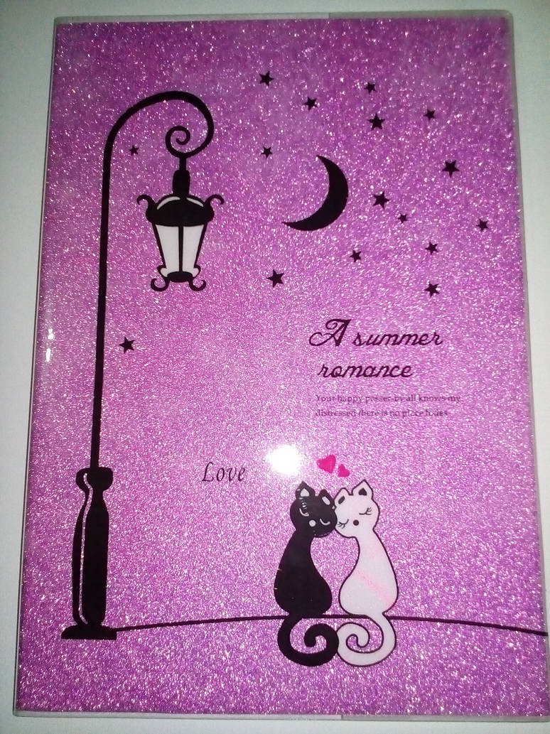 Love of Summer Night Diary 2 by NegshinNightLove