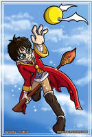 Quidditch by Asphydel