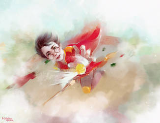 Harry's first game by MarinaMichkina