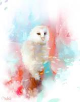 Owl by MarinaMichkina