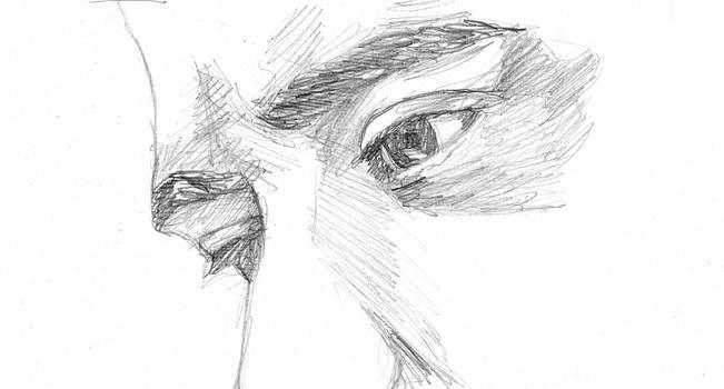 Connors Augen