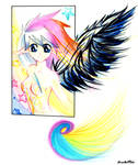 Wings of Color