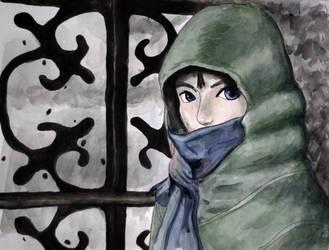 Zelda in Twilight by herbalcell