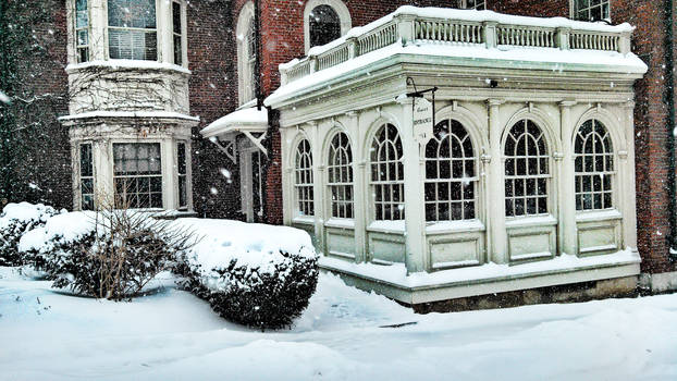 Quiet snow in New England town